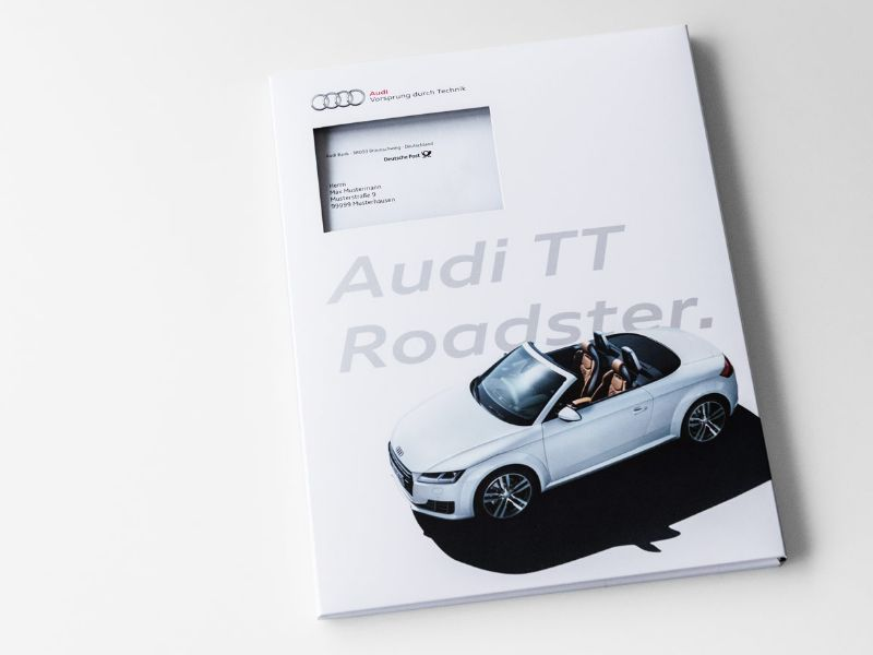 gingco_case_audi_tt_roadster_stage.jpg